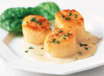 Sea Scallops with Chili Sauce